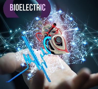 بیو الکتریک و مهندسی اطلاعات پزشکی - دانشگاه صنعتی امیرکبیر - دانشکده مهندسی  پزشکی